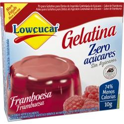 Gelatina em Po Lowcucar Zero 10gr Frambo