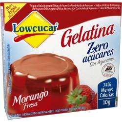 Gelatina em Po Lowcucar Zero 10gr Morang