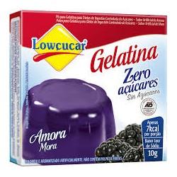 Gelatina em Po Lowcucar Zero 10gr Amora