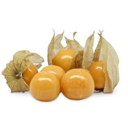 Fruta Phyta