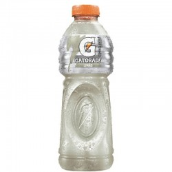 Gatorade Pet 500ml Limao
