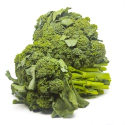 Brócolis Maço