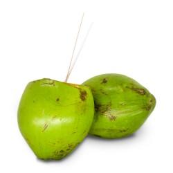 Coco Verde Unidade