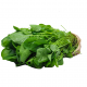 Agrião Baby Horta Verde